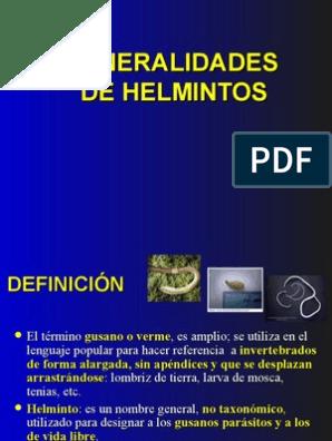 helmintos definicion
