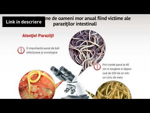 Substanțe periculoase - Securitate și sănătate în muncă – EU-OSHA