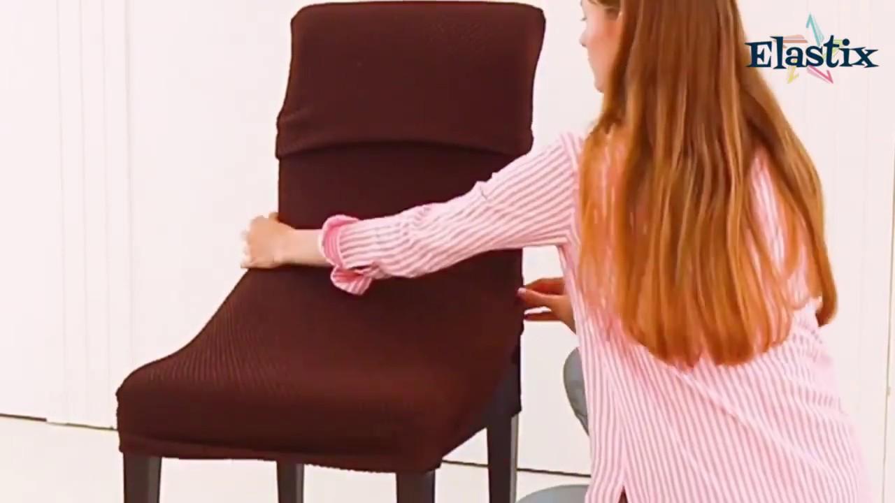 viermele rotund a ieșit cu un scaun