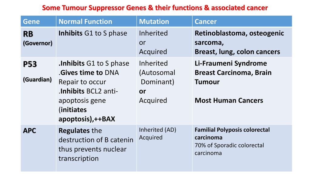 Neuroendocrine cancer hereditary - coboramlaprima.ro
