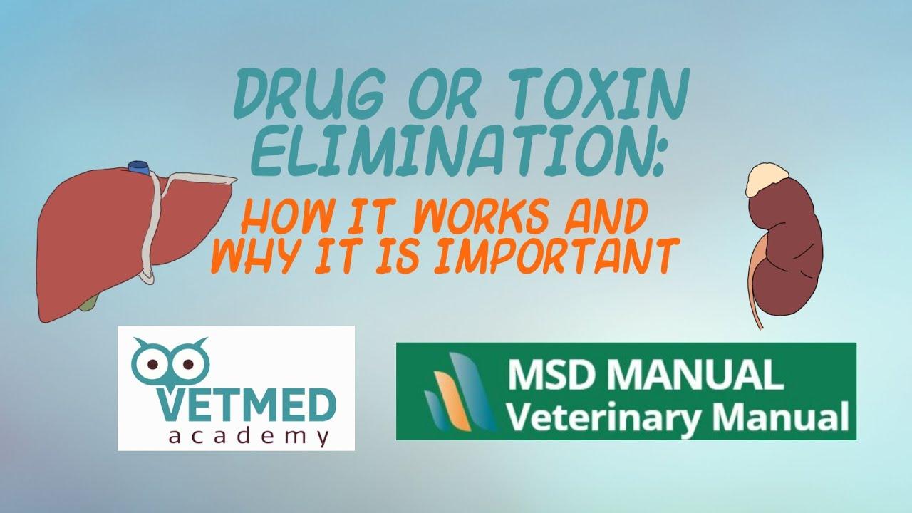 Giardioza: simptome, preventie, tratament - Farmacia Ta - Farmacia Ta