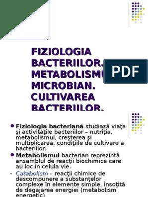 Bacili gram negativi nonfermentativi şi alte tipuri rare de bacterii gram negative