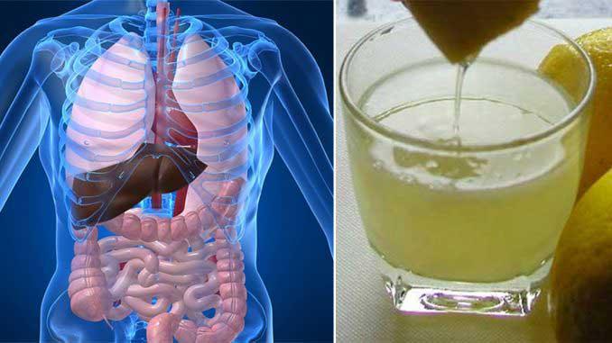 Tăiați colonul curățați sistemul de detoxifiere a corpului