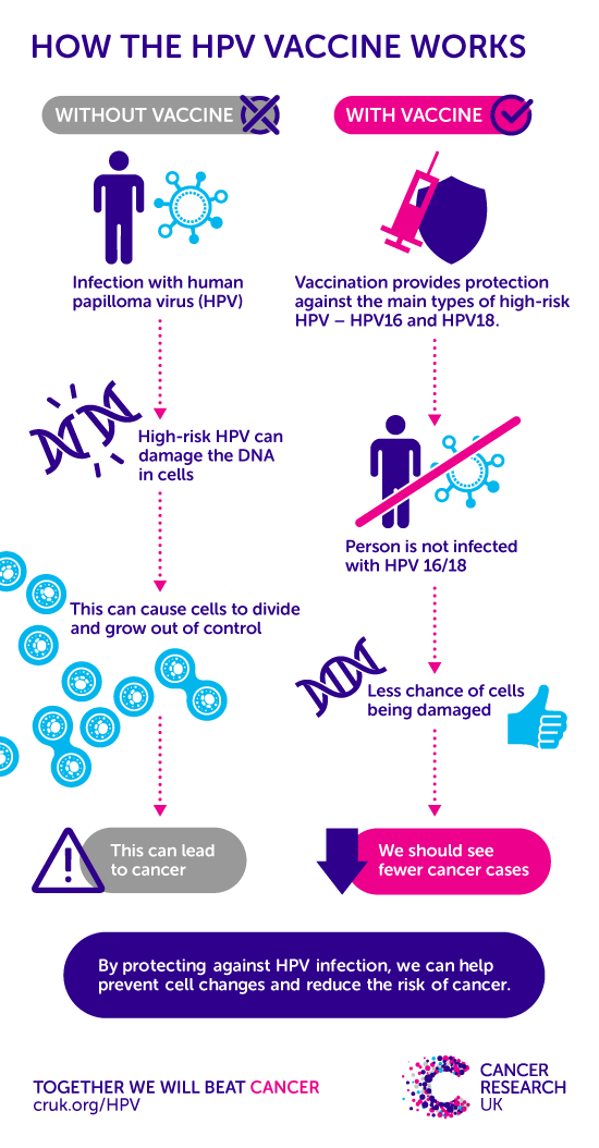 genital hpv cause cancer