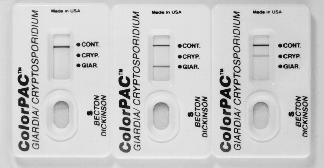 ecran giardia cryptosporidium
