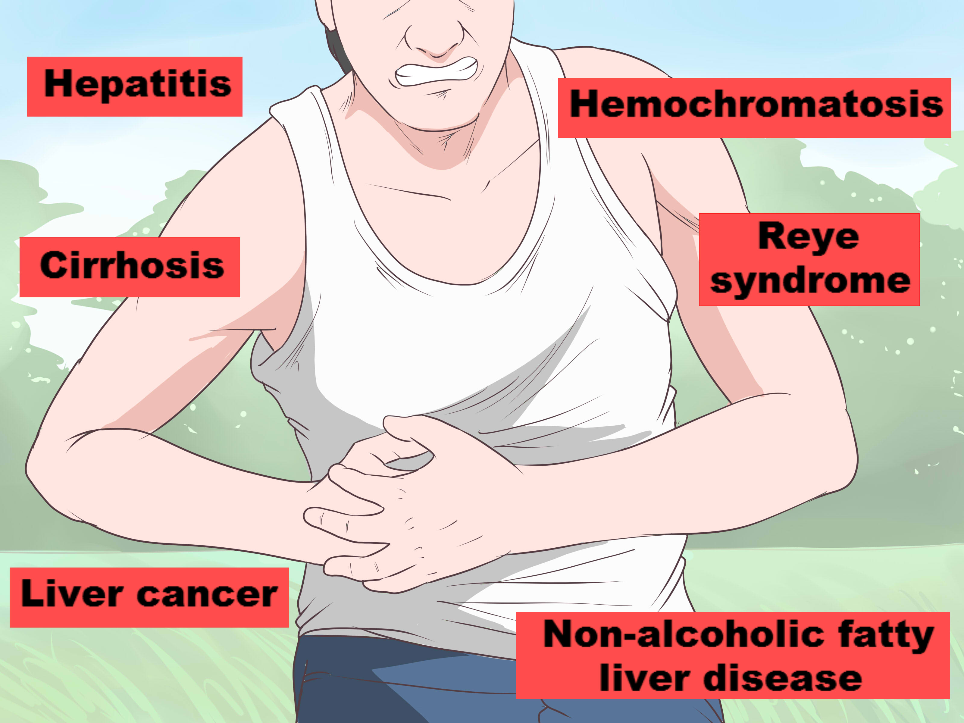 Hepatic cancer and nausea. Traducere