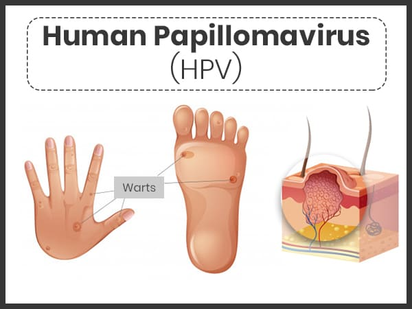 hpv virus facts