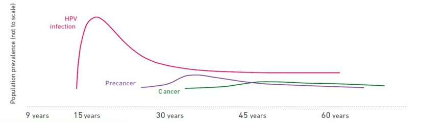 High risk hpv genotypes cancer - coboramlaprima.ro - Hpv cancer chances