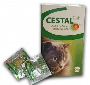 DEPARAZITAREA INTERNA - Ingrijirea Animalelor De Companie