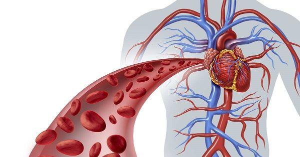 Anemia -tipuri de anemii – coboramlaprima.ro