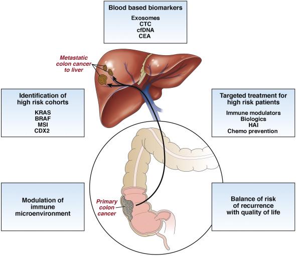 metastatic cancer in liver treatment papillomavirus infection peau