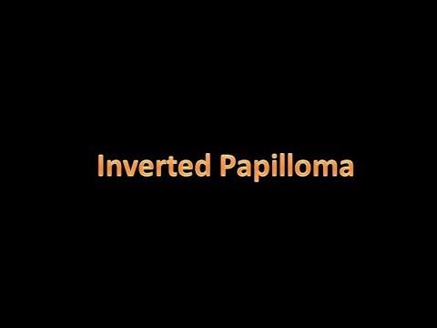 clamă hermafrodită sau nu tratament naturist impotriva papiloamelor