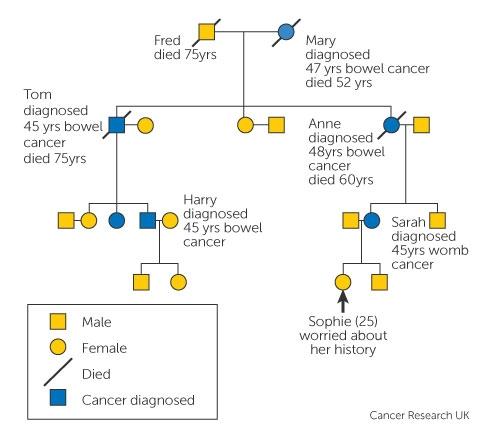 Factorii care ne predispun la cancer - Aegon Romania