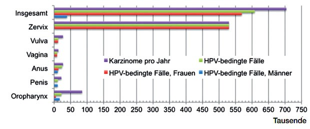 hpv high risk infektion condiloame după criodestrucție