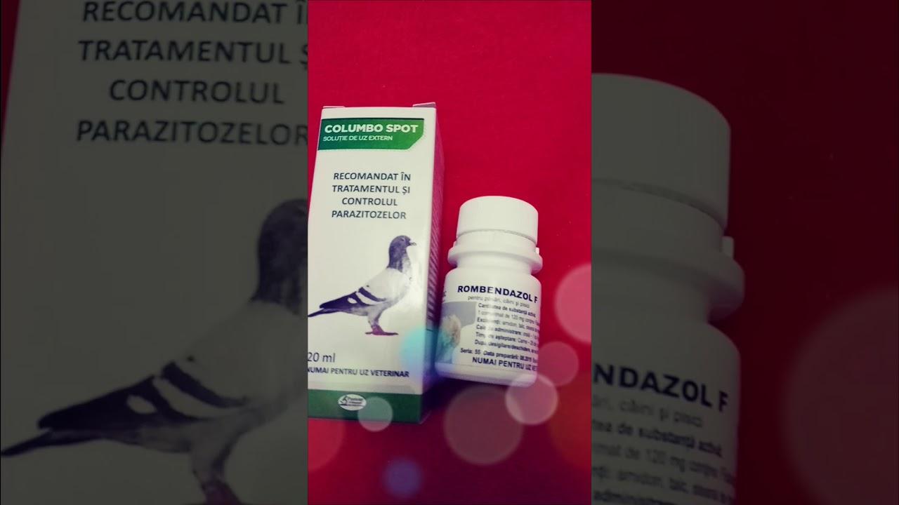 Malarie - cauze, manifestari