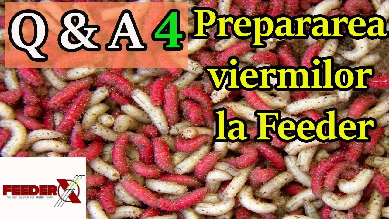 preparate de curățare a viermilor human papillomavirus 45
