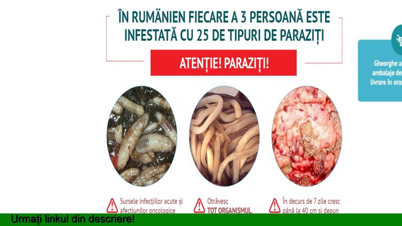Cum scapam de paraziti??? | Comunitatea coboramlaprima.ro