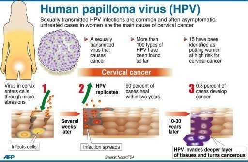 high risk hpv to cancer