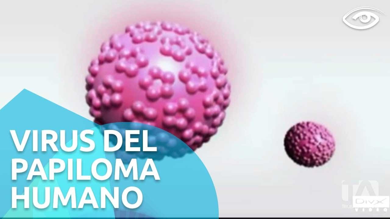 virus del papiloma guayaquil