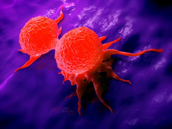 cancer immuno hormonal