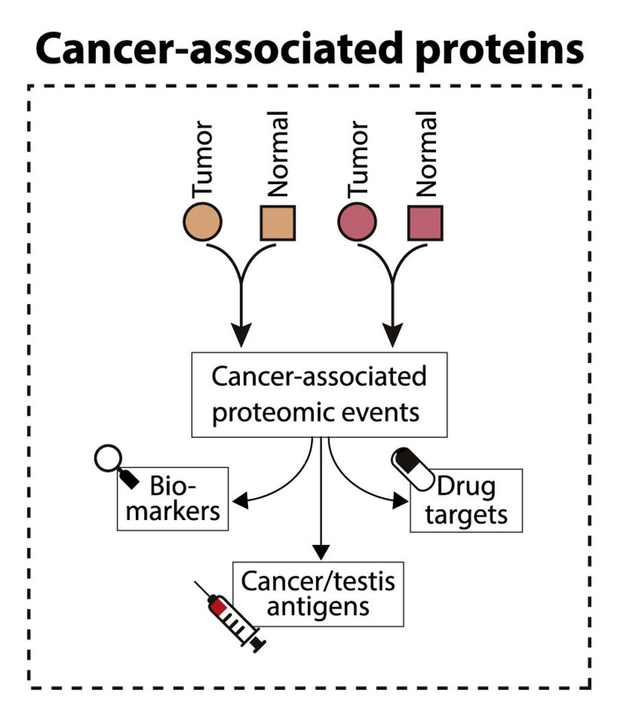 Neoplasm - Wikipedia - Colon cancer genetic heterogeneity - Colon cancer genetic marker