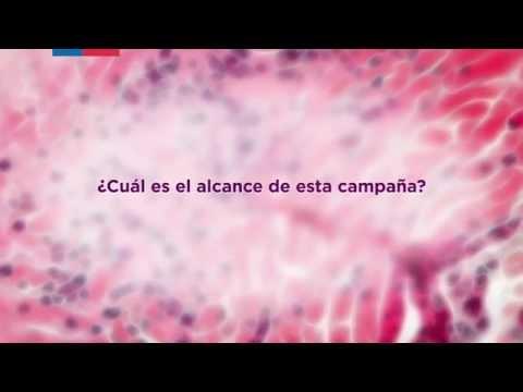 cursul tratamentului viermilor la om hofigal complex detoxifiant natural
