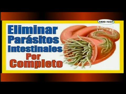 Tratamiento contra el oxiuros - Renal cancer ipilimumab nivolumab