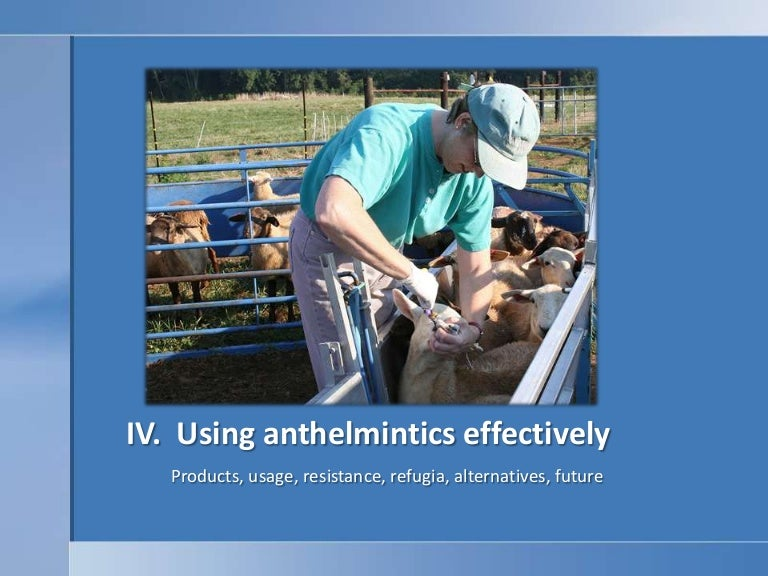 natural anthelmintic definition