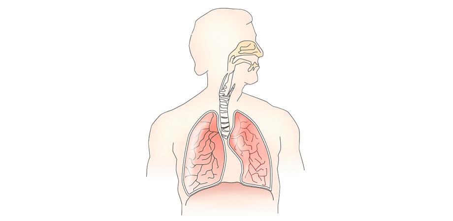 paraziti respiratorii
