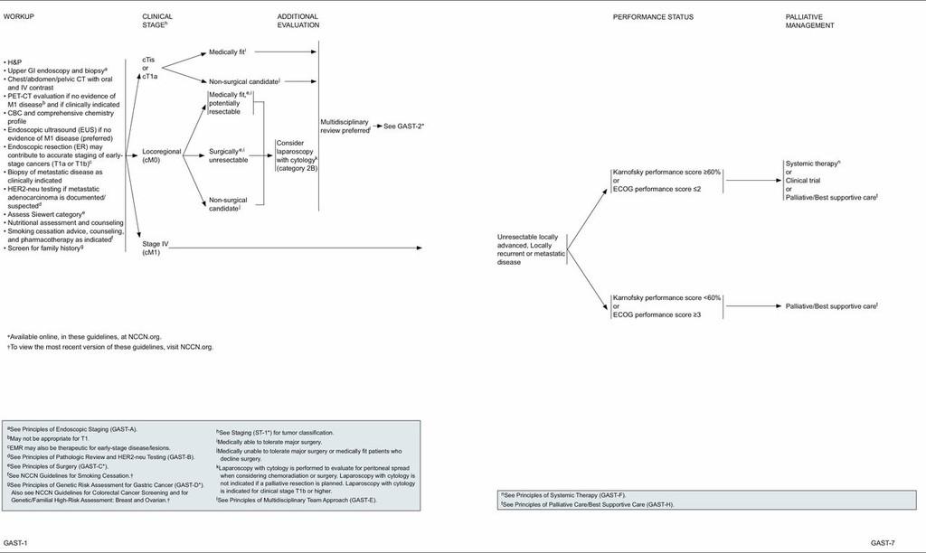 Gastric cancer nccn guidelines - coboramlaprima.ro