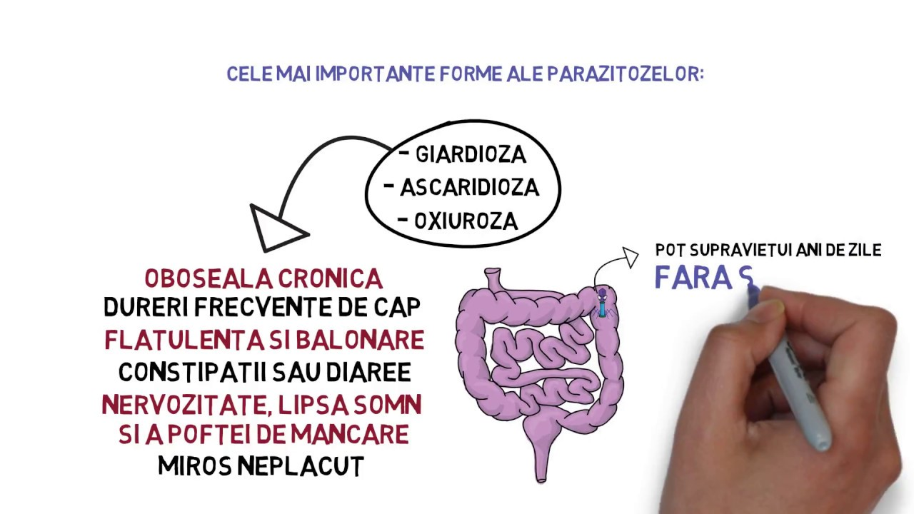 Infecția cu Giardia poate afecta pe oricine – Smart Medical