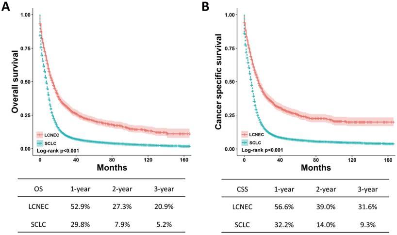 neuroendocrine cancer lungs prognosis