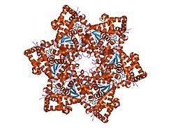 pastile dietetice parazite