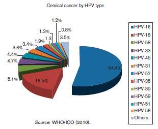 Papillomavirus homme et cancer, Papillomavirus homme cancer. Urmăriți cancerul de penis
