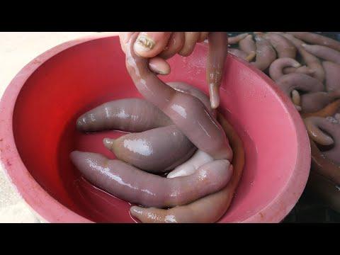 prepararea lichidului pentru viermi