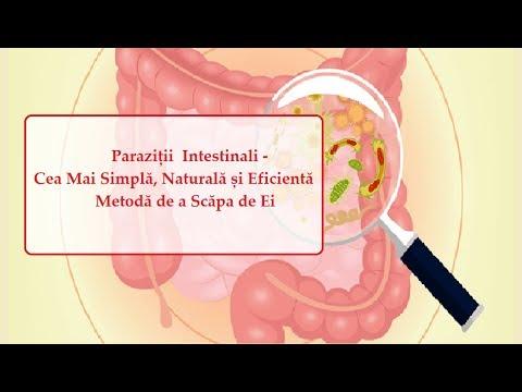 tablete de curățare a paraziților intestinali tratament veruca genitala