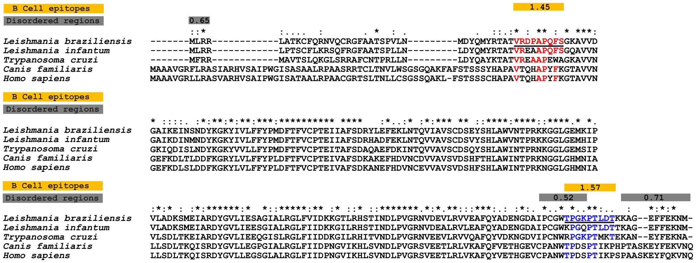 trypanosoma leishmania paraziți