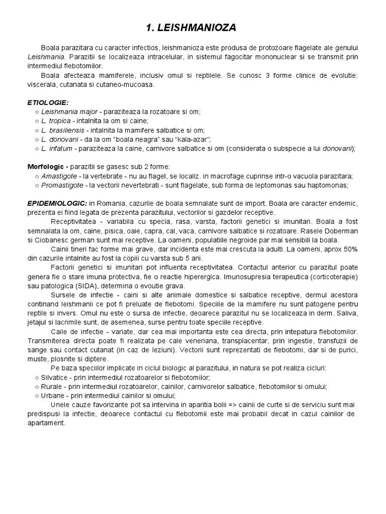 mai scumpe - Traducere în spaniolă - exemple în română | Reverso Context
