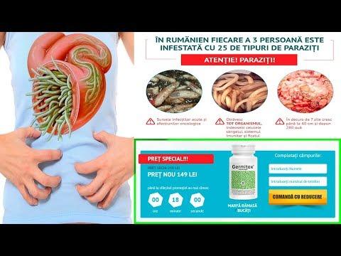 sfaturi pentru tratarea parazitilor ca viermi intestinali si flukes hepatice cu plante medicinale