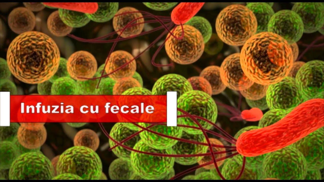 tablete helminthox din viermi