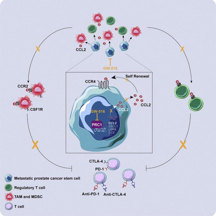 Cancerul de prostată - terapie cu protoni ProCure