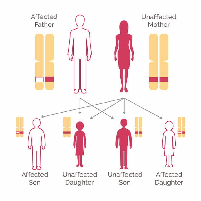cancer genetic mutations in humans