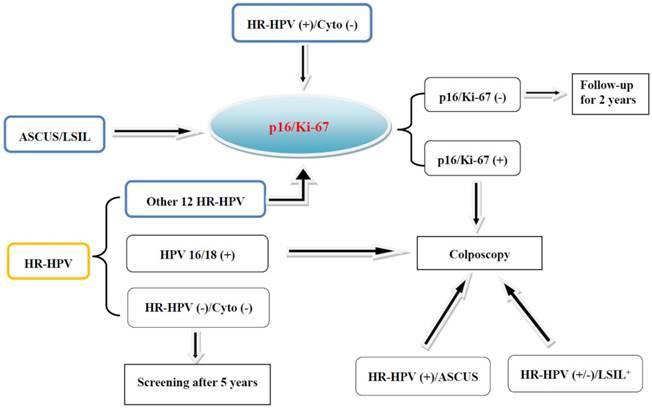 papillomavirus p16