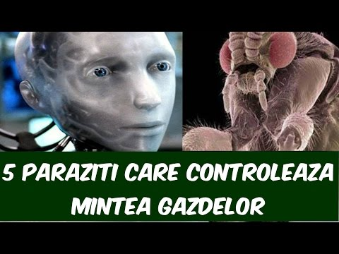 vindecă paraziții faciali wart on foot with black dots