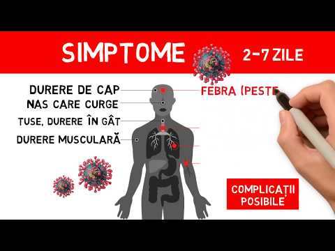 Flumed-Farm S.R.L - Vermizol mg/10ml 10 ml