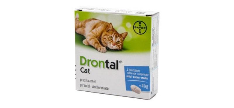 pastile viermi pisici